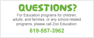 Questions? For Education programs for children, adults and families, or any school related programs, please call Zoo Education: 619-557-3962