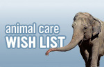 Animal Care Wish List