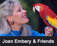 Joan Embery and Friends
